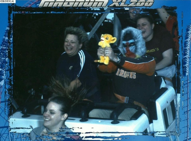 awesome-lion-king-roller-coaster
