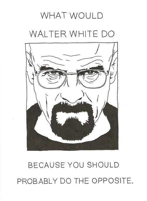 walter-white-opposite
