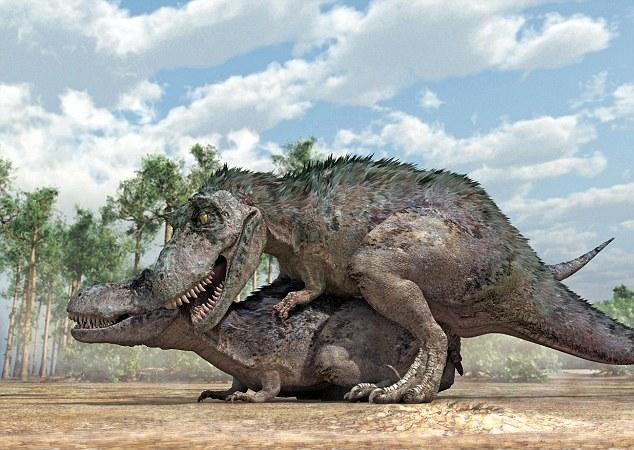 Tyrannosaurus rex dinosaurs mating