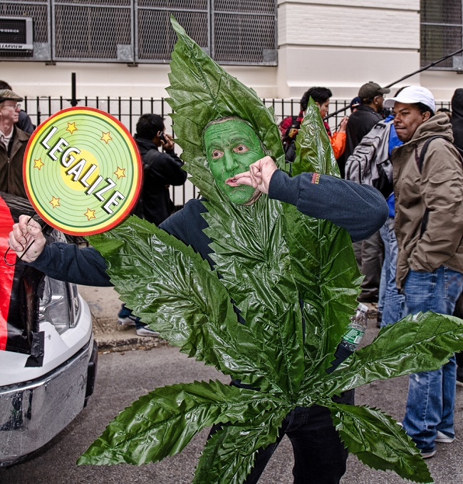 weed-costume