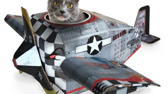 airplane-cat-house