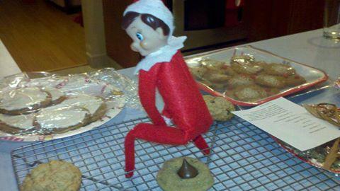 elf-poop