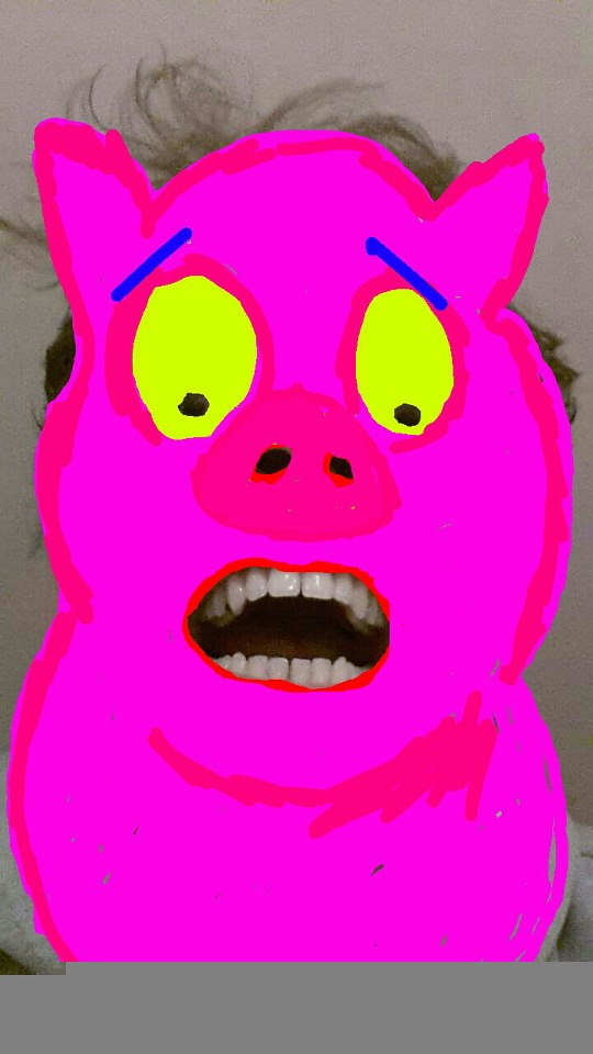 pig-snapchat
