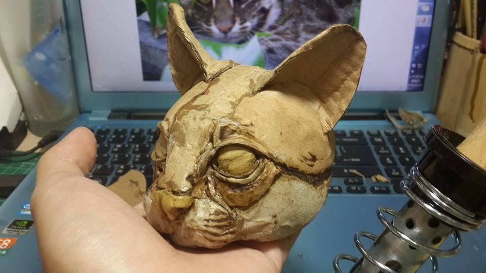 cat-cardboard
