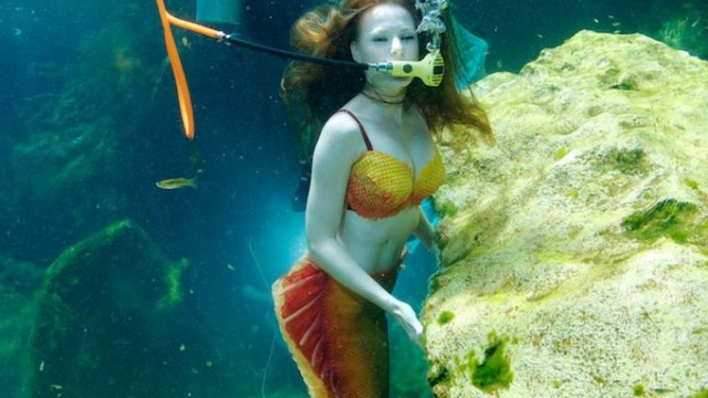 mermaid scuba2