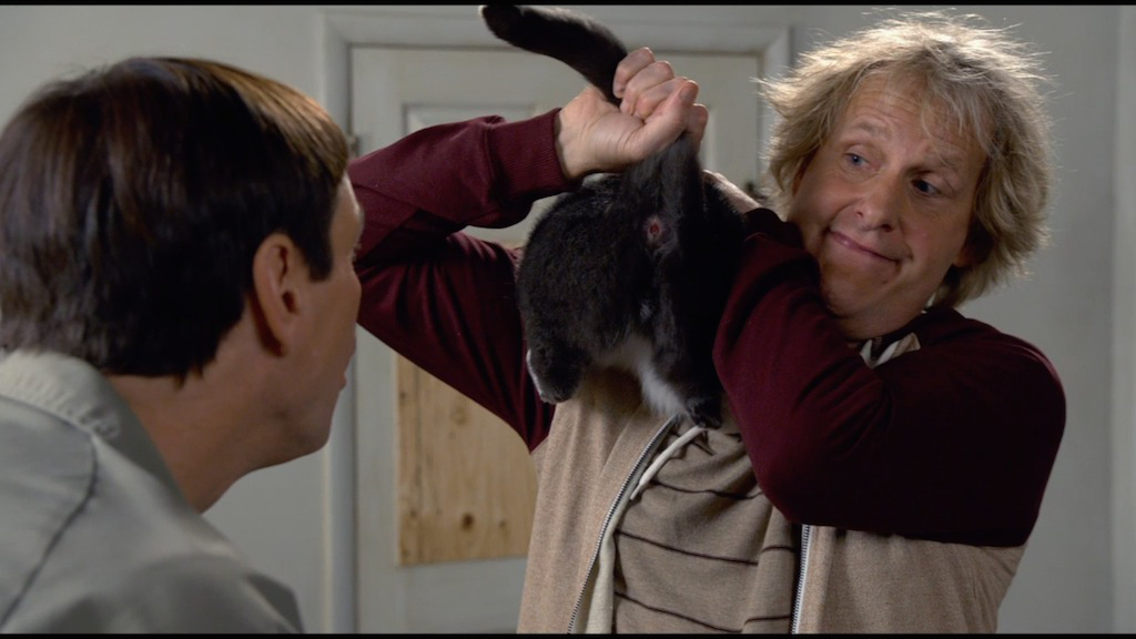 dumb-and-dumber-to-trailer-screenshot-cat-butthole