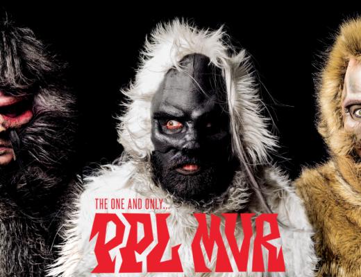 pplmvr-feat